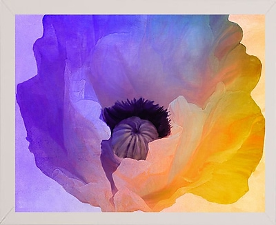 Ebern Designs 'Poppy Gradient III' Print; Affordable White Medium Framed Paper