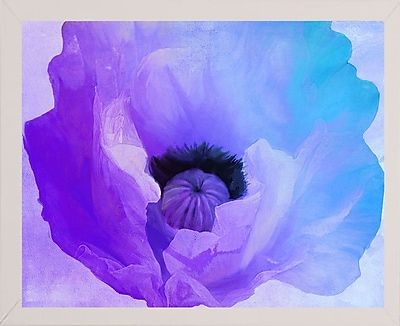 Ebern Designs 'Poppy Gradient IV' Print; Affordable White Medium Framed Paper