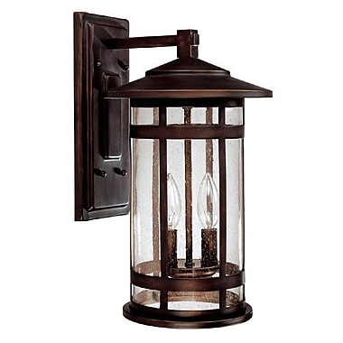 Gracie Oaks Luiz Outdoor Wall Lantern; Incandescent