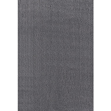 Williston Forge Mohamed Gray Area Rug; 2' x 3'3''