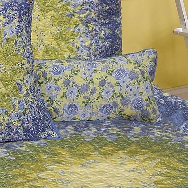 Red Barrel Studio Galvan Star 100pct Cotton Boudoir Pillow