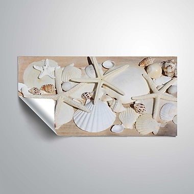 ArtWall North Beach Shells Wall Mural; 24'' H x 48'' W