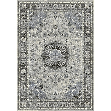 Astoria Grand Attell Silver/Gray Area Rug; 5'3'' x 7'7''