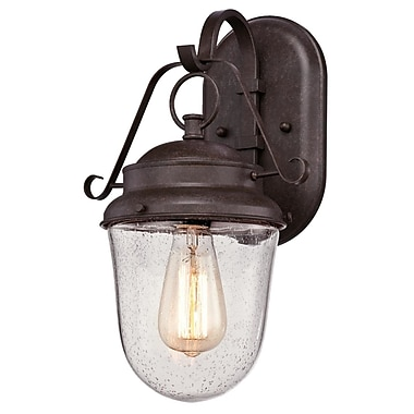 Alcott Hill Southport 1-Light Outdoor Wall Lantern