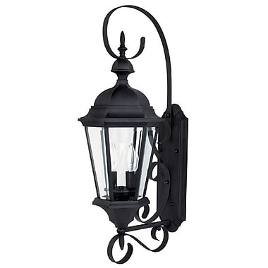 Alcott Hill Hounsfield 2-Light Outdoor Wall Lantern; Black