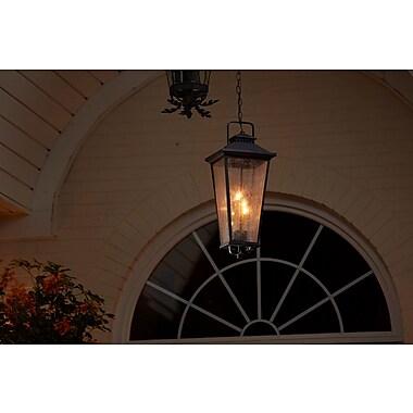 Darby Home Co Fraser 4-Light Lantern Pendant
