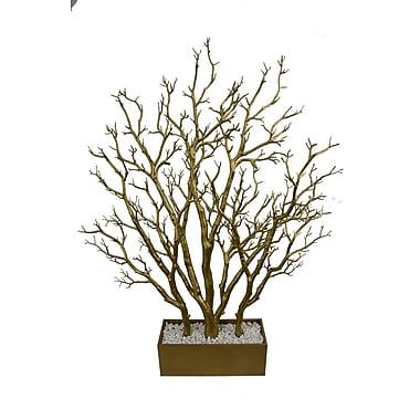 Orren Ellis Dormant Tree w/ Wide Pot; White
