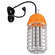 Symple Stuff 1-Light LED Metal Cage Foyer/Lantern Pendant