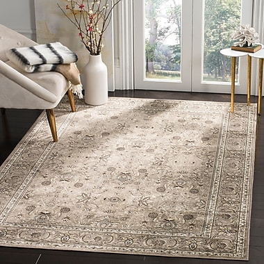 Darby Home Co Carolus Traditional Rectangle Silver Area Rug; 3'3'' x 4'7''