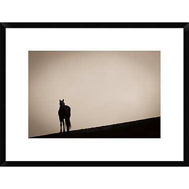 East Urban Home 'Alone at Sunset' Framed Photographic Print; 12'' H x 18'' W