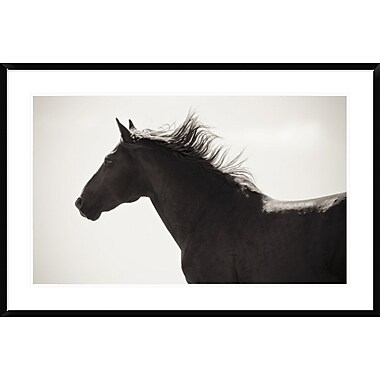 East Urban Home 'Free Spirit Crop' Framed Photographic Print; 36'' H x 36'' W