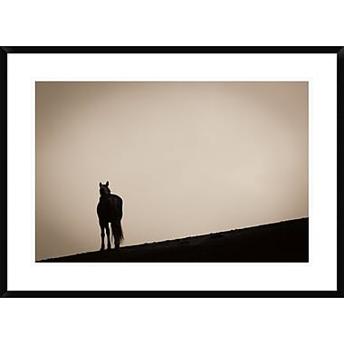 East Urban Home 'Alone at Sunset' Framed Photographic Print; 20'' H x 30'' W