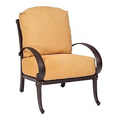 Woodard Holland Patio Chair w/ Cushions; Canvas Iris