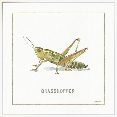 East Urban Home 'My Greenhouse Grasshopper' Framed Print; 30'' H x 30'' W