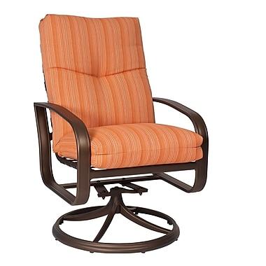Woodard Cayman Isle Swivel Rocking Chair w/ Cushions; Canvas Navy