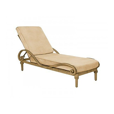Woodard South Shore Adjustable Chaise Lounge w/ Cushion; Canvas Iris