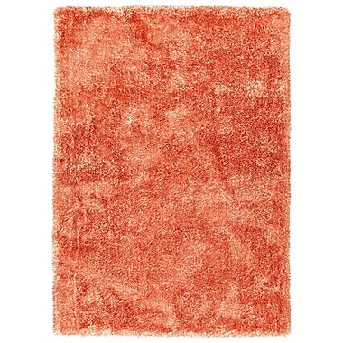 Ebern Designs Bieber Tangerine Area Rug; 8' x 10'