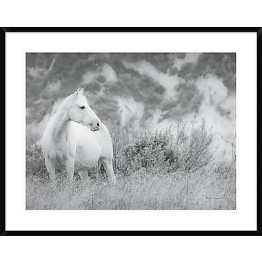 East Urban Home 'Misty Mare Crop' Framed Photographic Print; 24'' H x 32'' W