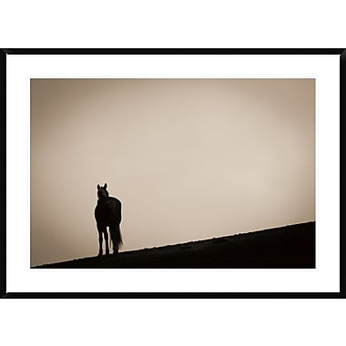 East Urban Home 'Alone at Sunset' Framed Photographic Print; 24'' H x 36'' W