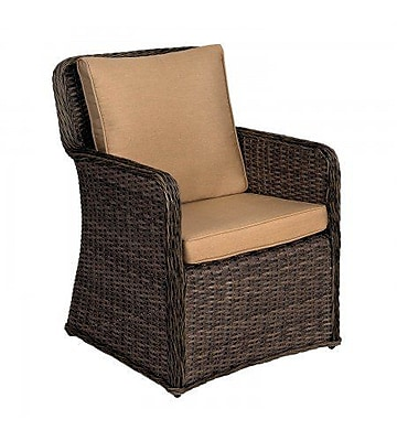 Woodard Bay Shore Patio Dining Chair w/ Cushion; Canvas Chestnut