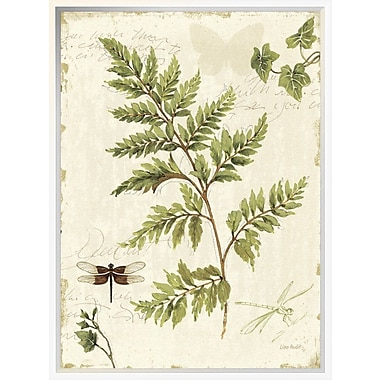 East Urban Home 'Ivies and Ferns I' Framed Graphic Art Print; 24'' H x 18'' W