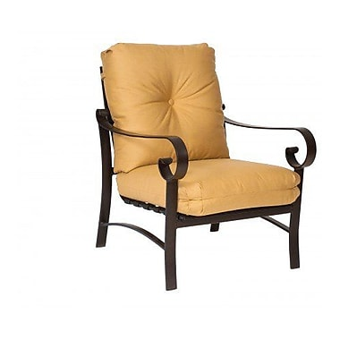 Woodard Belden Stationary Patio Chair w/ Cushions; Paris Honeydew