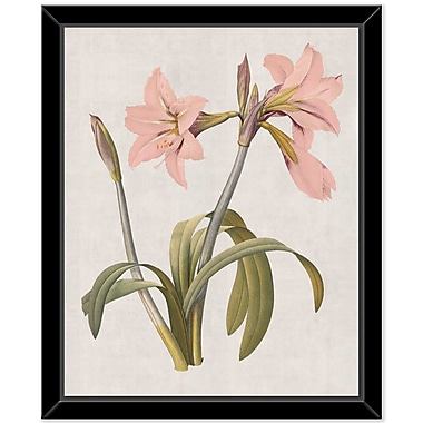 Bay Isle Home 'Flower' Framed Print on Canvas