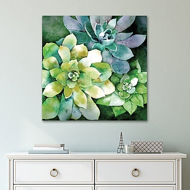Bungalow Rose 'Succulents 1' Acrylic Painting Print on Gallery Wrapped Canvas; 36'' H x 36'' W