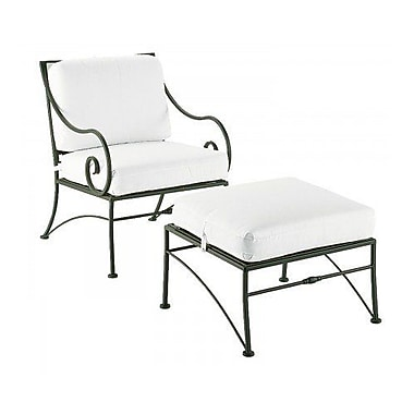Woodard Sheffield Patio Chair w/ Cushions; Canvas Iris