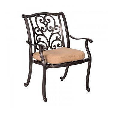 Woodard New Orleans Patio Dining Chair w/ Cushion; Canvas Iris
