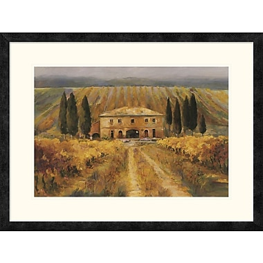 East Urban Home 'Toscana Vigna Special' Framed Print; 16'' H x 24'' W