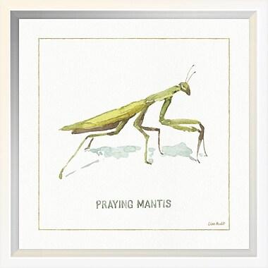 East Urban Home 'My Greenhouse Praying Mantis' Framed Print; 10'' H x 10'' W