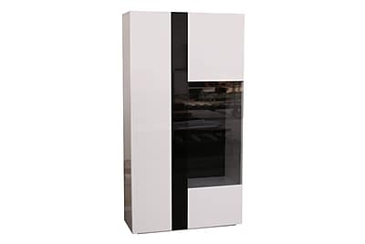 Orren Ellis Scorpius Display 2 Door Accent Cabinet
