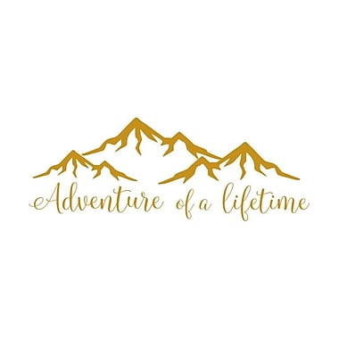 Decal House Adventure of a Lifetime Quote Wall Decal; Gold