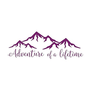 Decal House Adventure of a Lifetime Quote Wall Decal; Violet
