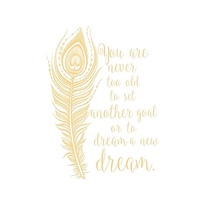 Decal House You Are Never Too Old to Set Quote Wall Decals; Cream