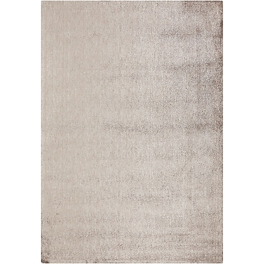 Orren Ellis Yiwei Light Gray Area Rug; 7' x 10'