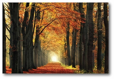 Winston Porter 'In Love w/ Fall Again' Photographic Print on Wrapped Canvas