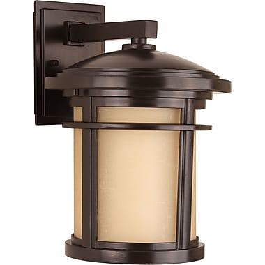 Bloomsbury Market Chamberlain Traditional 1-Light Wall Lantern; Antique Bronze