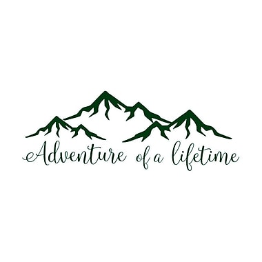 Decal House Adventure of a Lifetime Quote Wall Decal; Green
