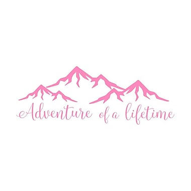 Decal House Adventure of a Lifetime Quote Wall Decal; Pink