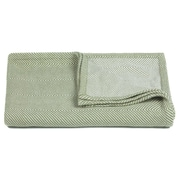 Ivy Bronx Busick Handcrafted Cotton Throw; Green / White