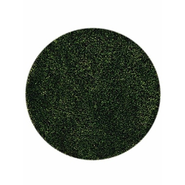Red Barrel Studio Taquan Hand Tufted Solid Green Area Rug; Round 8'