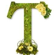 One Allium Way Floral Embellished Monogram Letter T 12'' Moss Wreath; Soft