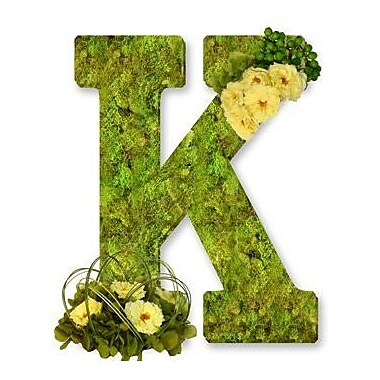 One Allium Way Floral Embellished Monogram Letter K Moss 12'' Wreath; Bright