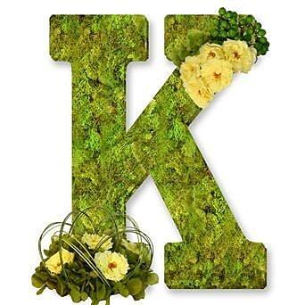 One Allium Way Floral Embellished Monogram Letter K Moss 12'' Wreath; Neutral