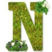 One Allium Way Floral Embellished Monogram Letter N 12'' Moss Wreath; Soft