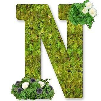 One Allium Way Floral Embellished Monogram Letter N 12'' Moss Wreath; Bright