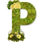 One Allium Way Floral Embellished Monogram Letter P 12'' Moss Wreath; Bright