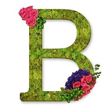 One Allium Way Monogram Letter B 12'' Moss Wreath; Soft